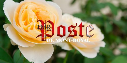 La poste de Mont-Royal | TMR Post